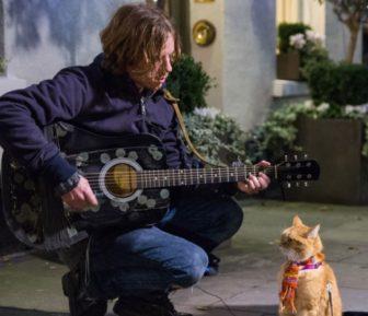 映画【ボブという名の猫 幸せのハイタッチ】の見どころ