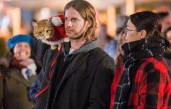 映画【ボブという名の猫2(仮)】ジェームズの心に残り続けるボブからの贈り物