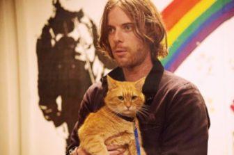 映画【ボブという名の猫 幸せのハイタッチ】励まし合い人生を共に歩む最強の相棒
